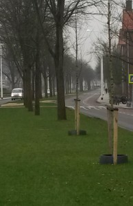 Straatroof op Vondelstraat. Eigen foto