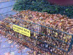 Vul de korf, alleen met bladeren.